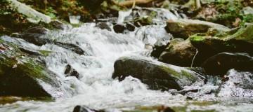 voda-1